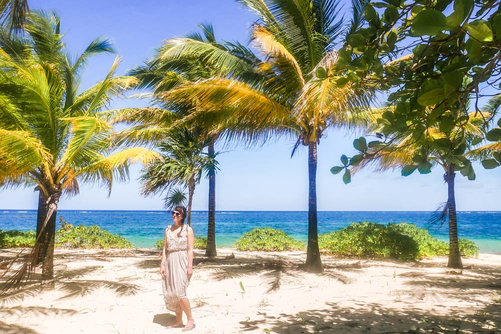 palm trees in the east end roatan