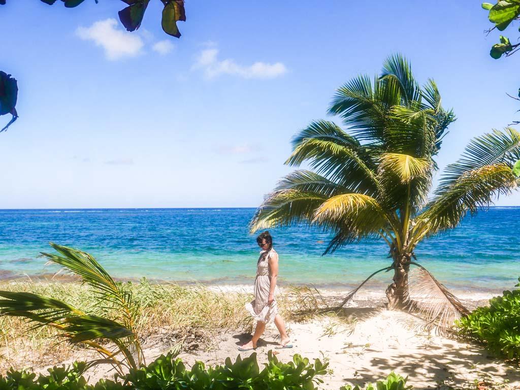 roatan travel east end jungle and beach