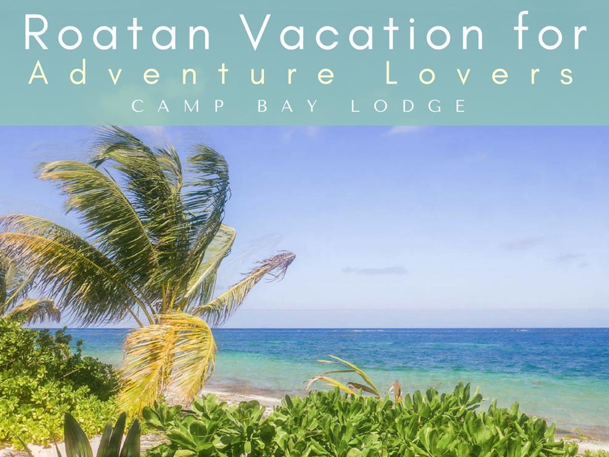roatan vacation camp bay lodge
