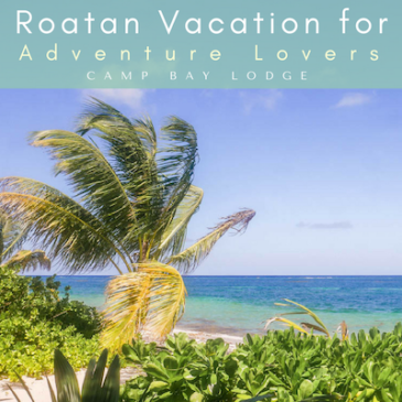 A Roatan Vacation for Adventure Lovers: Camp Bay Lodge in Off-the-Beaten Path East End