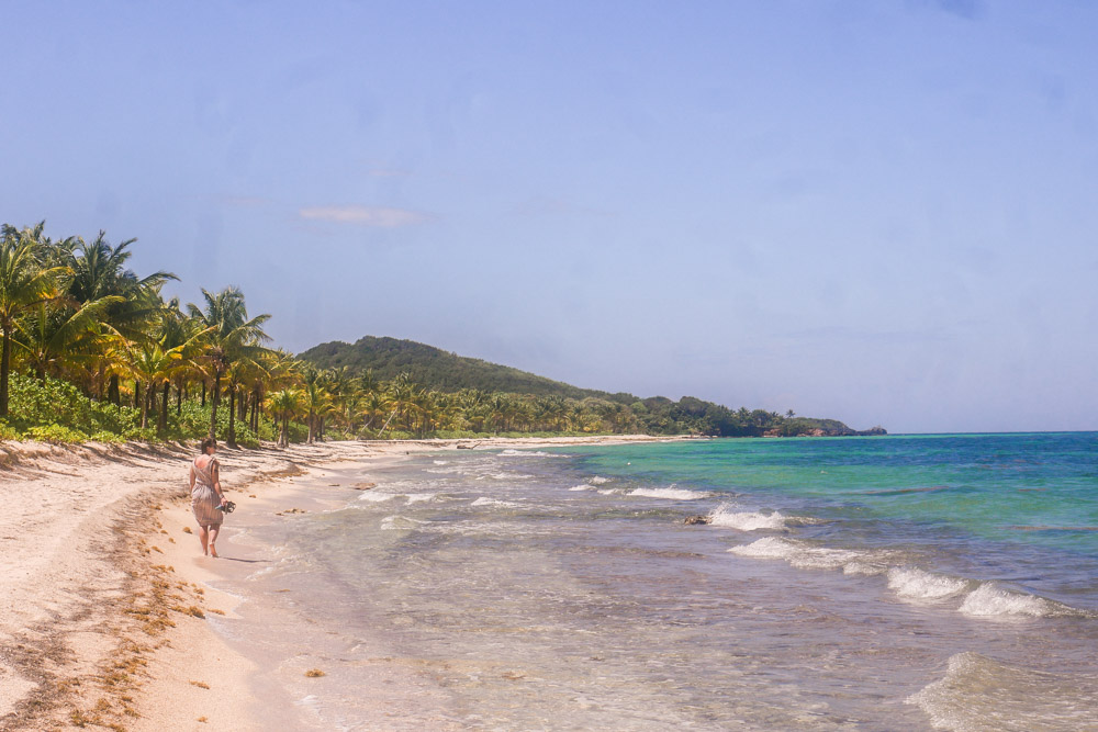 walking camp bay beach roatan honduras