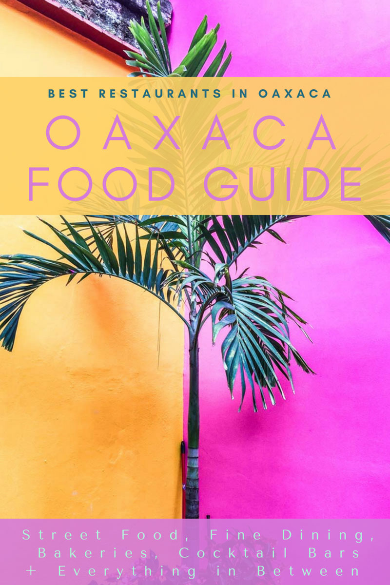 Copy of Copy of Copy of oaxaca food guide, best restaurants in oaxaca copyLR