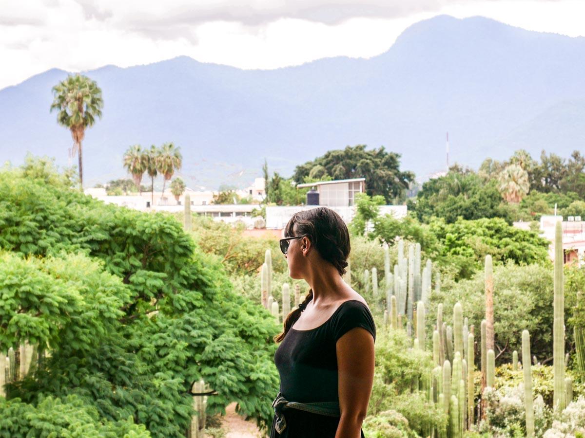 best restaurants in oaxaca botanical garden