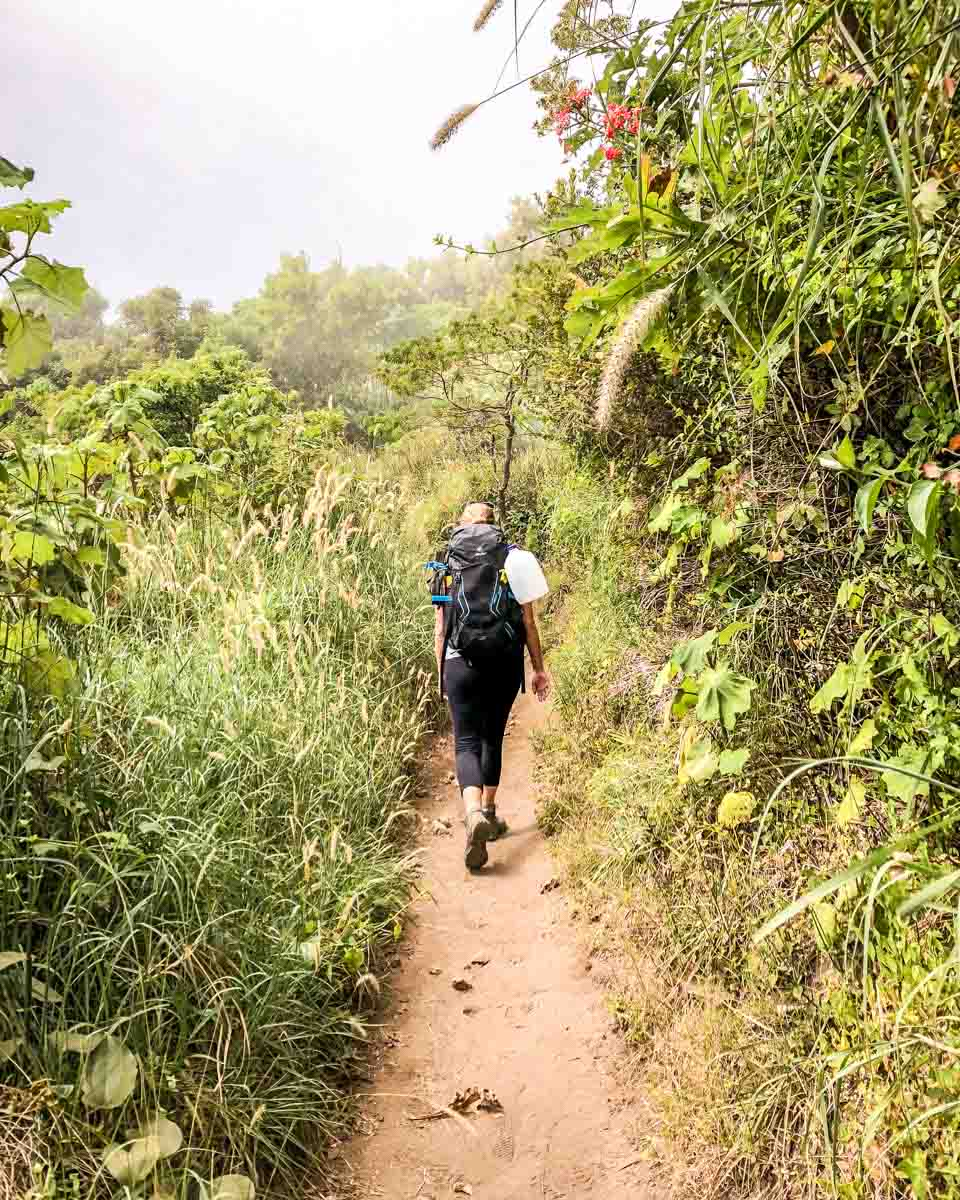 hiking santa ana volcano things to do in el salvador