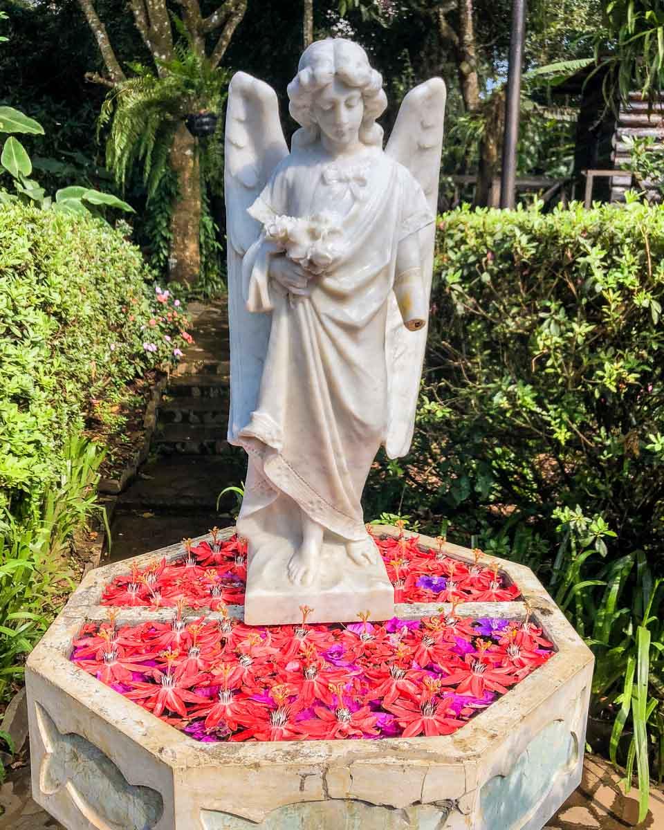 jardin de celeste el salvador restaurant