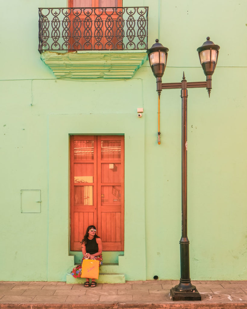 oaxaca wall shagbagg colorful tote