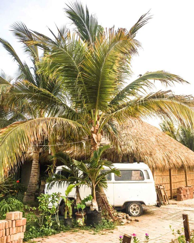 puerto escondido van and palm tree zicatela