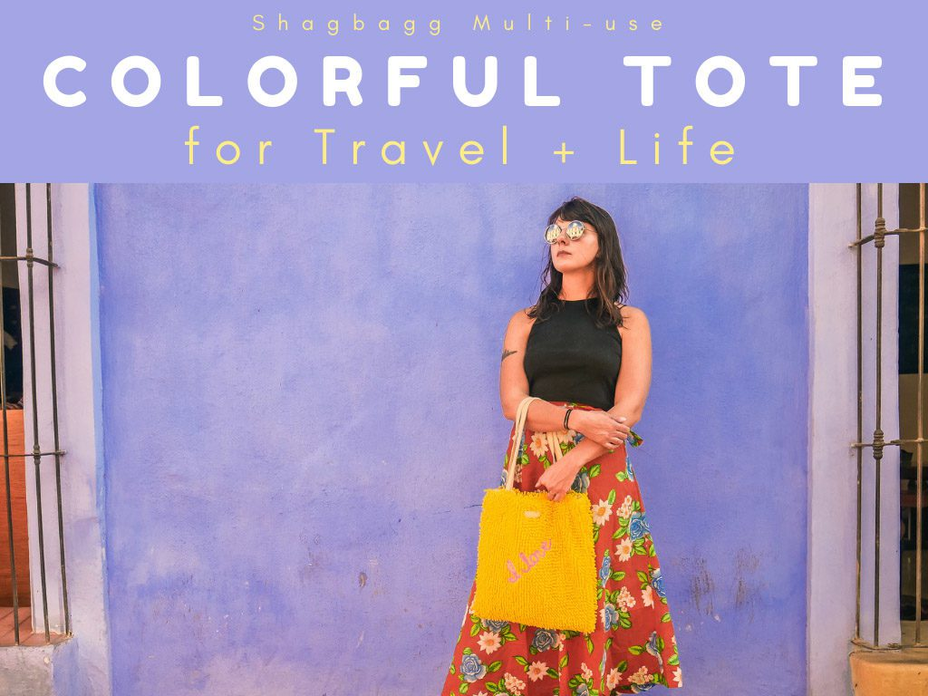 shagbagg travel colorful tote coverLR