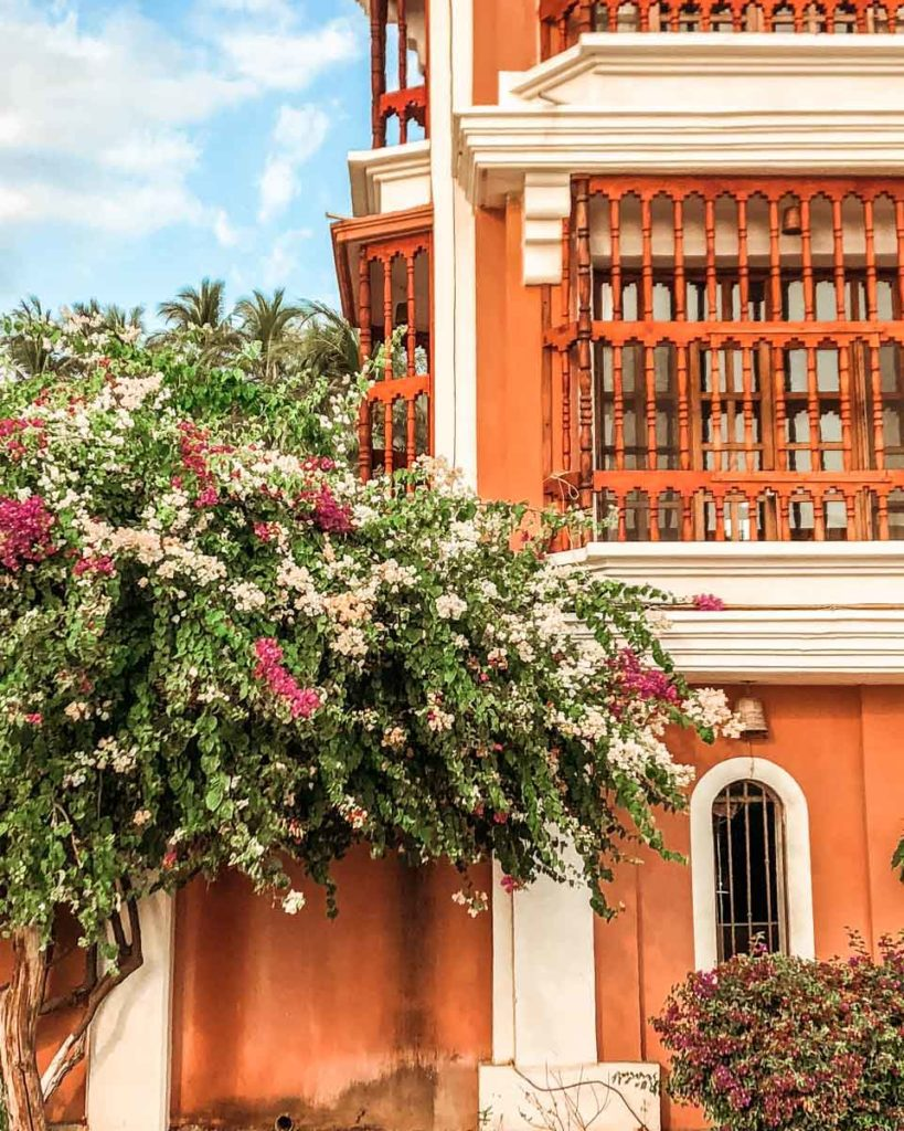 things to do in puerto escondido zicatela street flowers