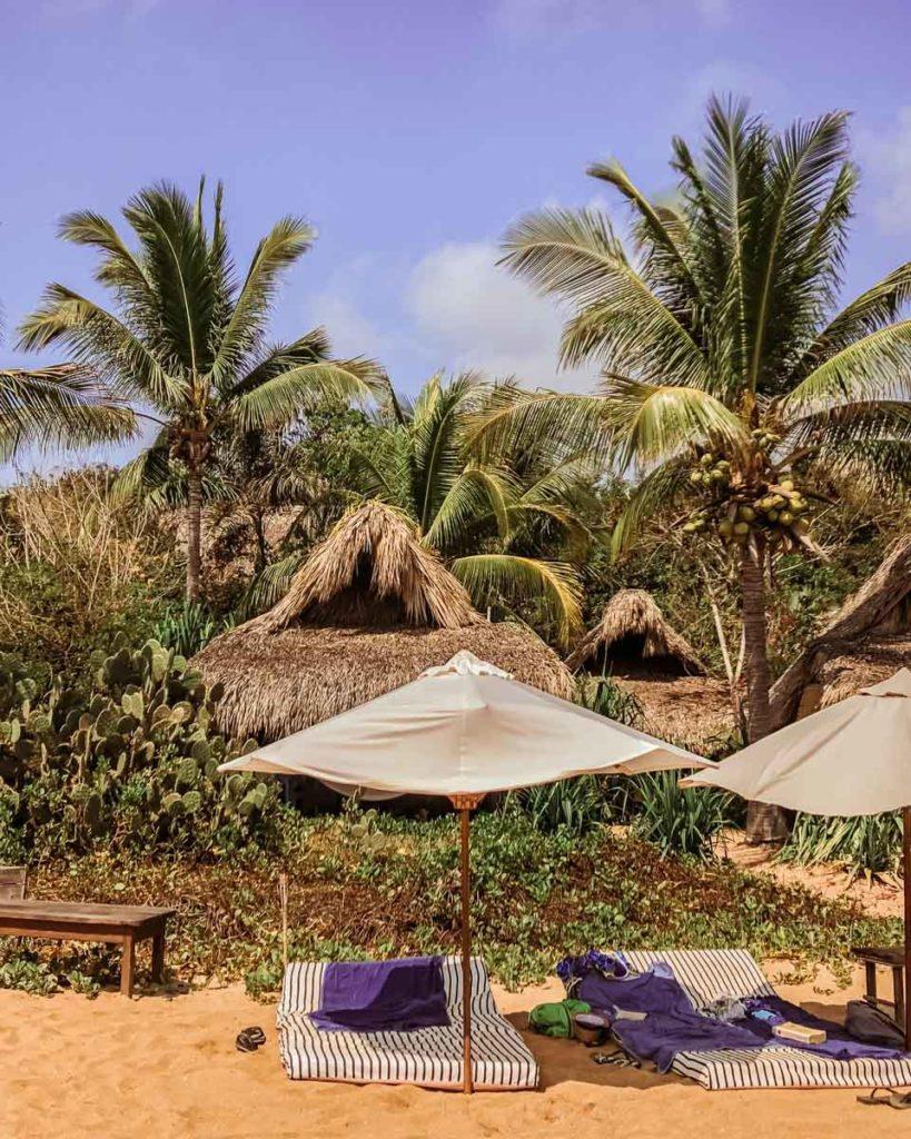 el alquimista zipolite beach oaxaca