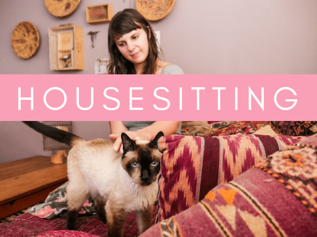 home page graphics housesitting