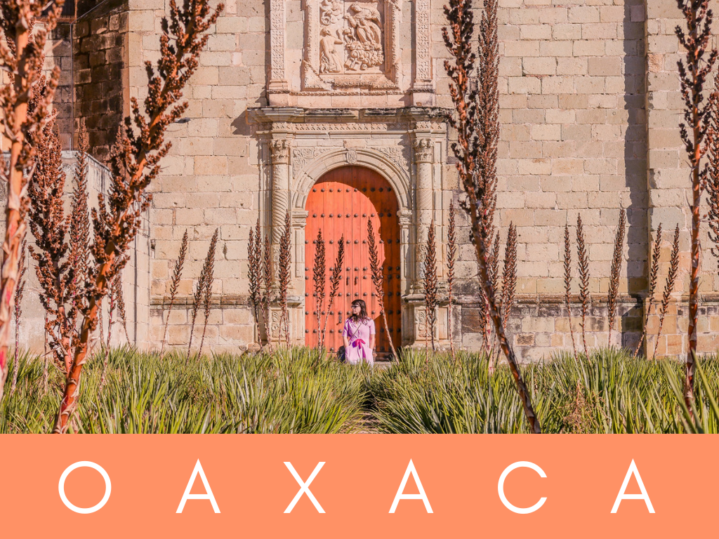 home page graphics oaxaca