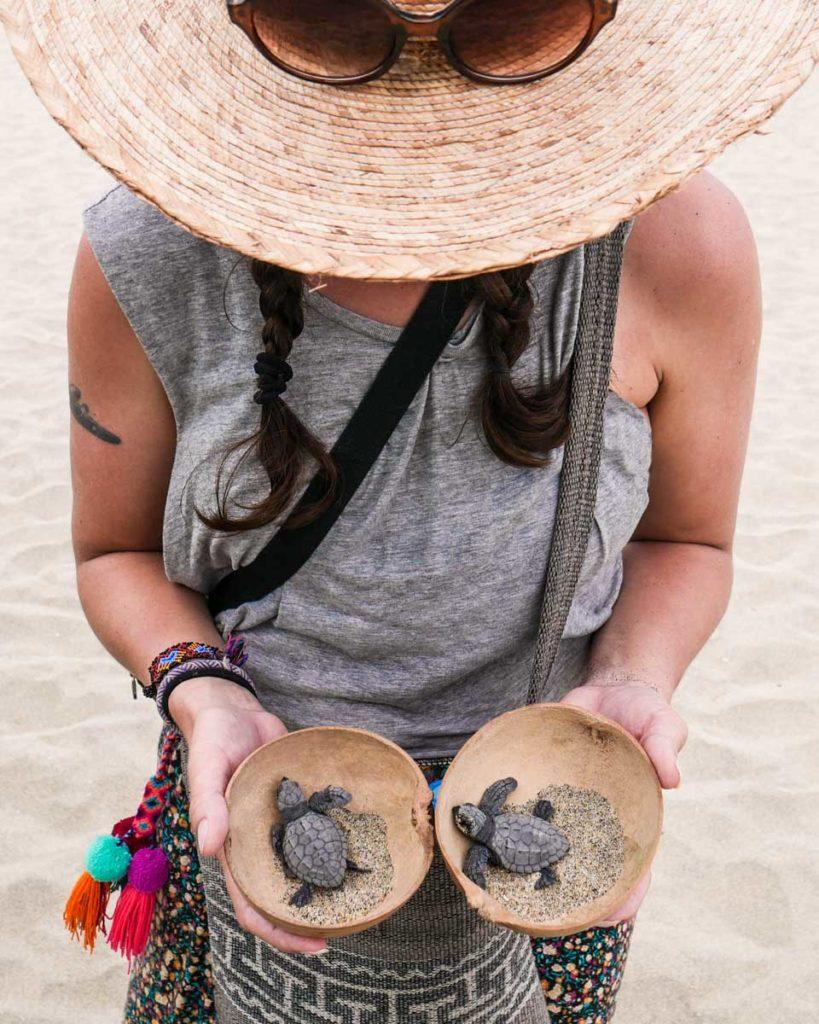playa bacocho oaxaca coast best beaches