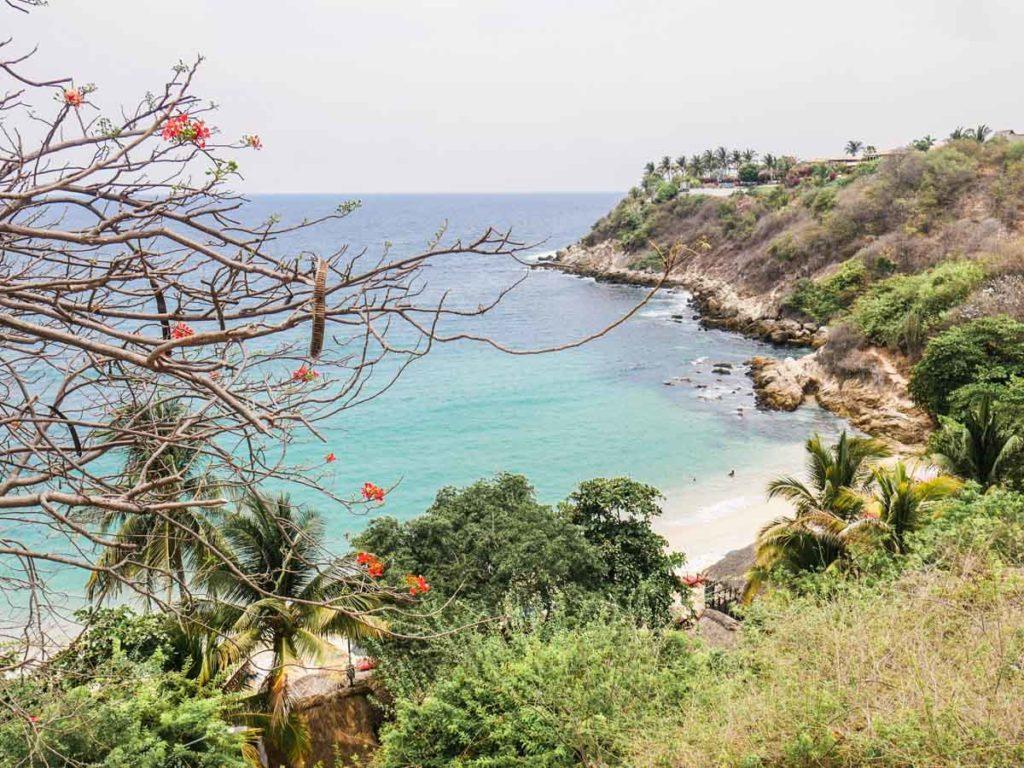 playa carrizalillo best beaches in oaxaca