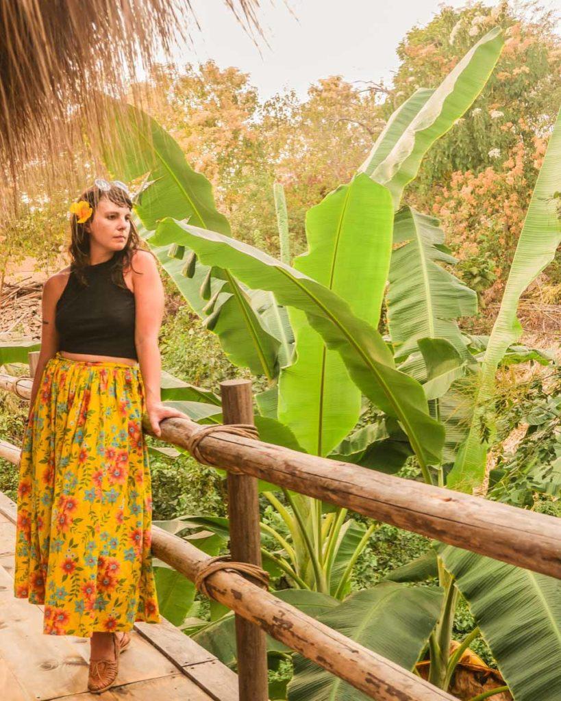 zazil retreat san agustinillo banana tree