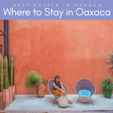 where to stay in oaxaca_ best hotels in oaxaca city copy