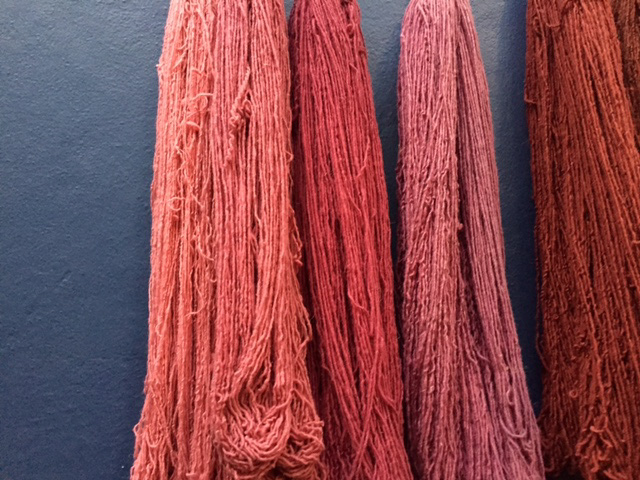 natural cochineal dyes by caitlin ahern copyLR