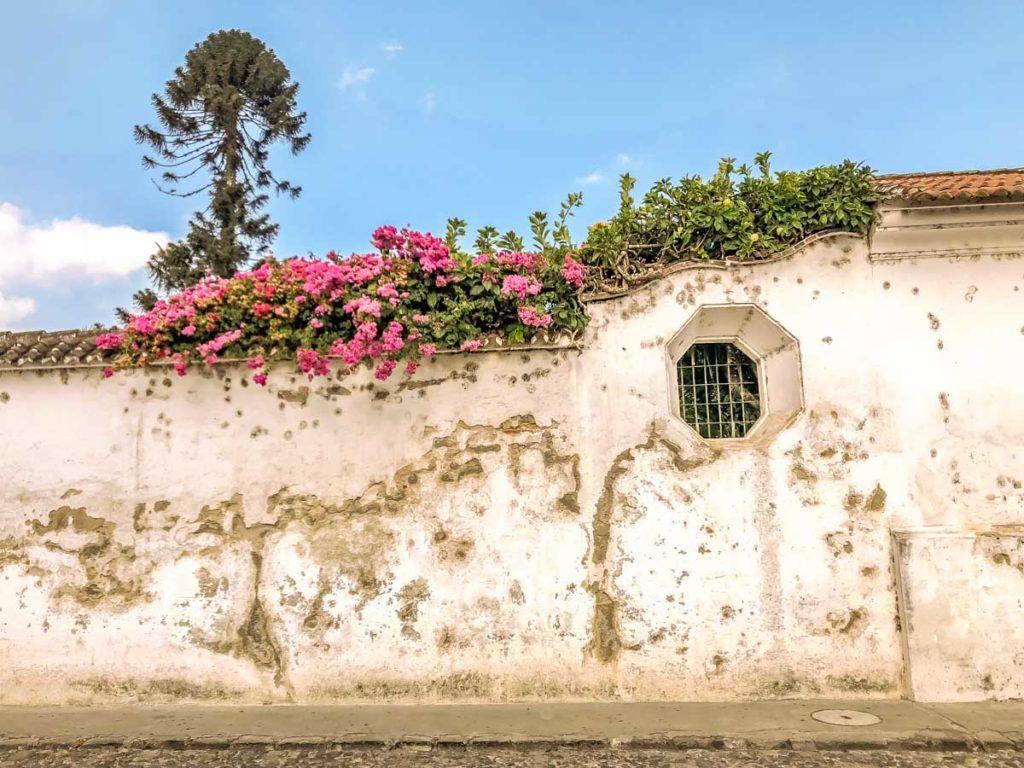 antigua guatemala wall