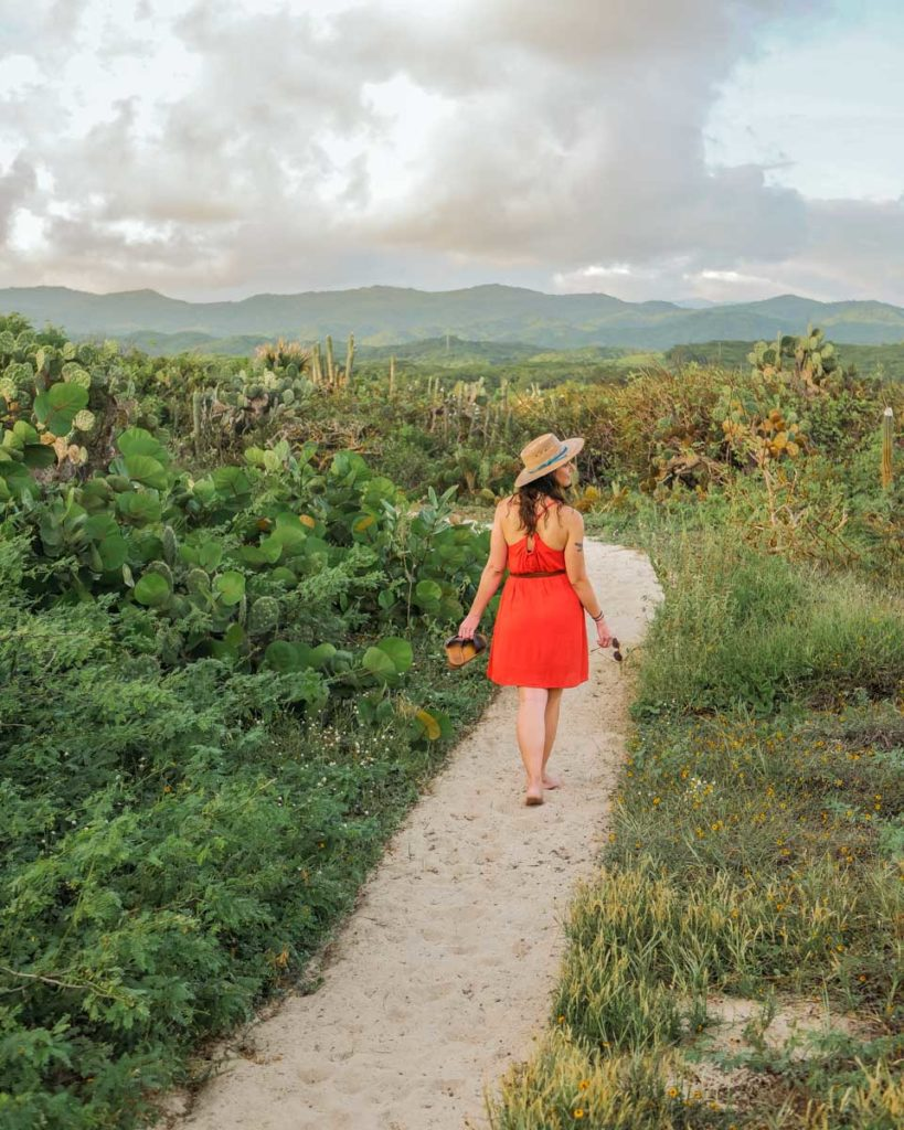 jungle path to casitas by the sea