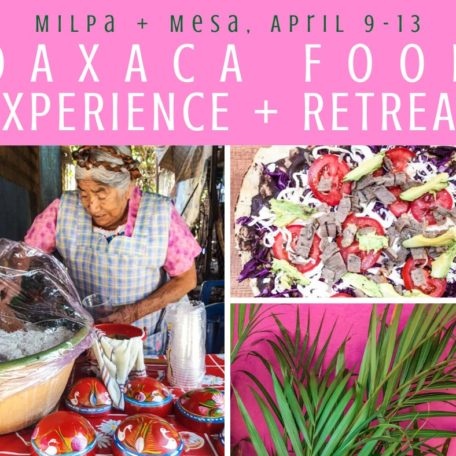 Copy of Copy of Copy of Oaxaca Retreat Milpa + Mesa, Oaxaca Food Tour Experience LR