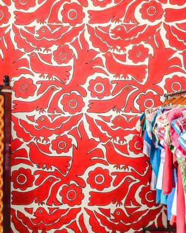 colorful walls in oaxaca