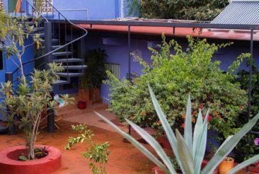 oaxaca food tour retreat in diablo y sandiaLR