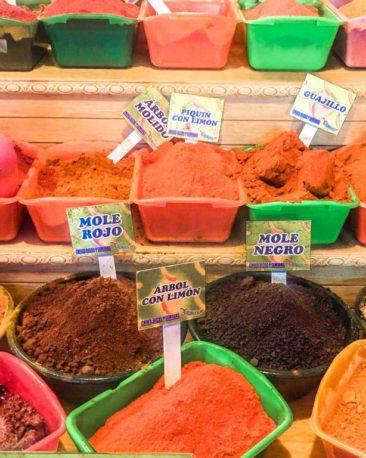 oaxaca markets food tourLR