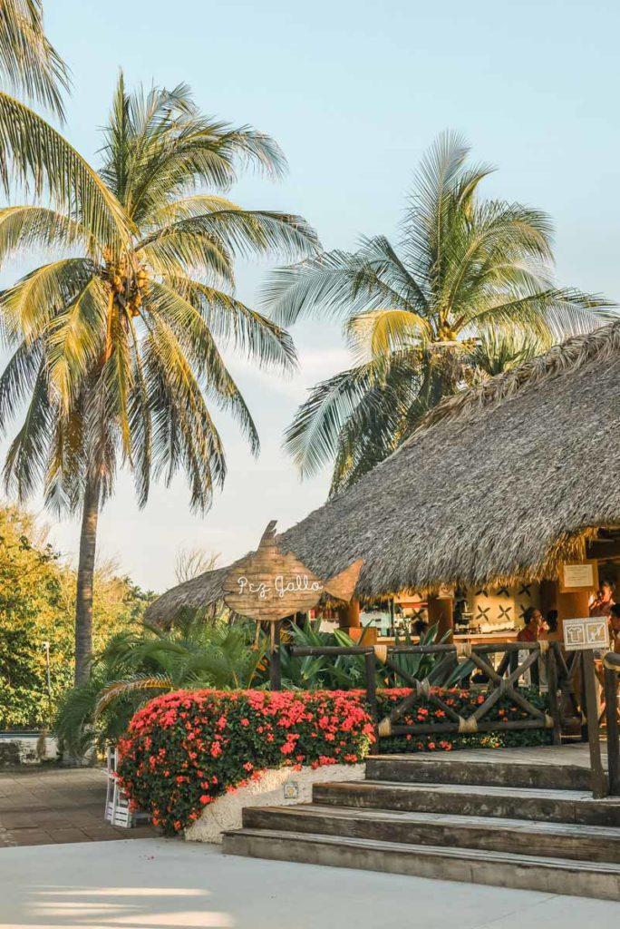 pez gallo restaurant playa bacocho puerto escondido