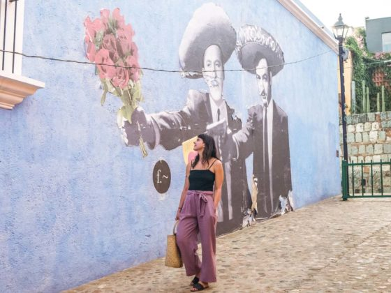 street art in oaxaca retreats