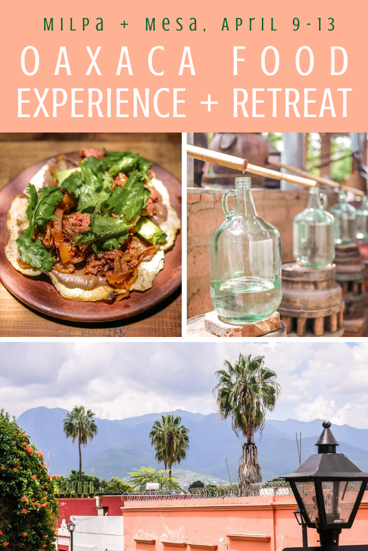 oaxaca retreat food experience
