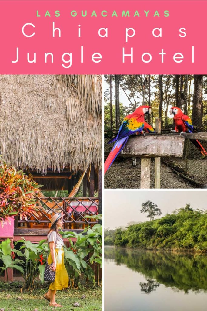 chiapas jungle hotel las guacamayas pinterest 2LR