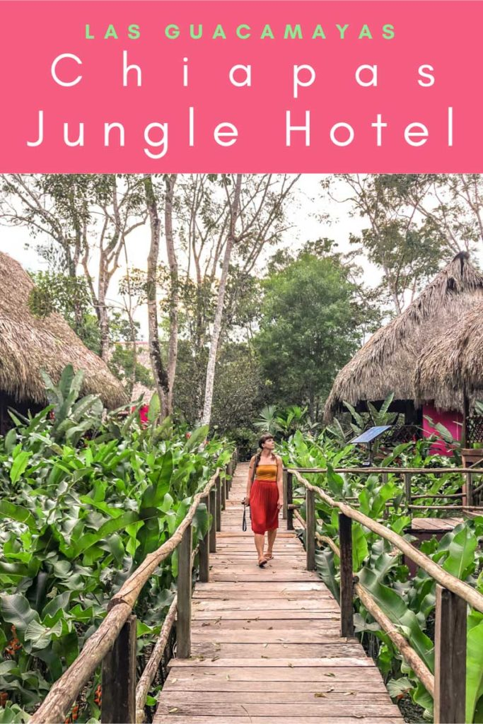chiapas jungle hotel las guacamayas pinterest 3LR