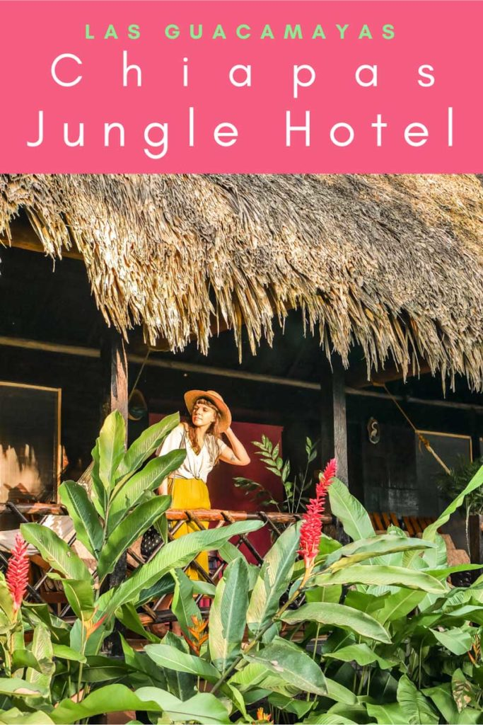 chiapas jungle hotel las guacamayas pinterest 5LR