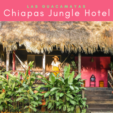 chiapas jungle hotel las guacamayas thumb