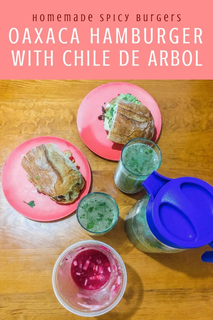 Copy of Copy of Copy of Copy of homemade spicy burgers, oaxaca style with chile arbolLR