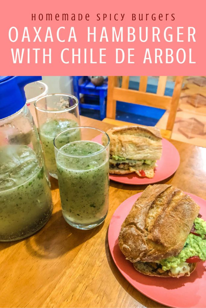 Copy of homemade spicy burgers, oaxaca style with chile arbolLR
