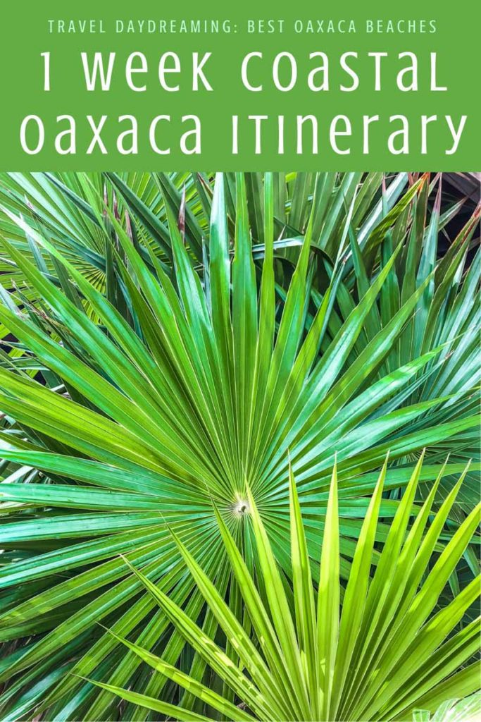Copy of Copy of Copy of 1 week coastal oaxaca itinerary best oaxaca beaches (1) copyLR