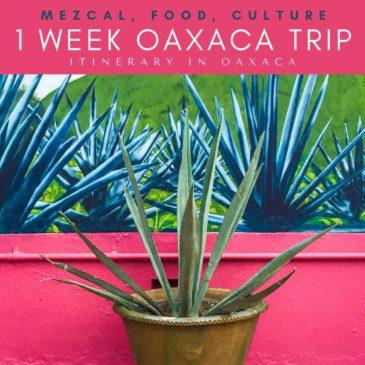 Copy of 1 week oaxaca trip_ itinerary in oaxaca (1)LRLR