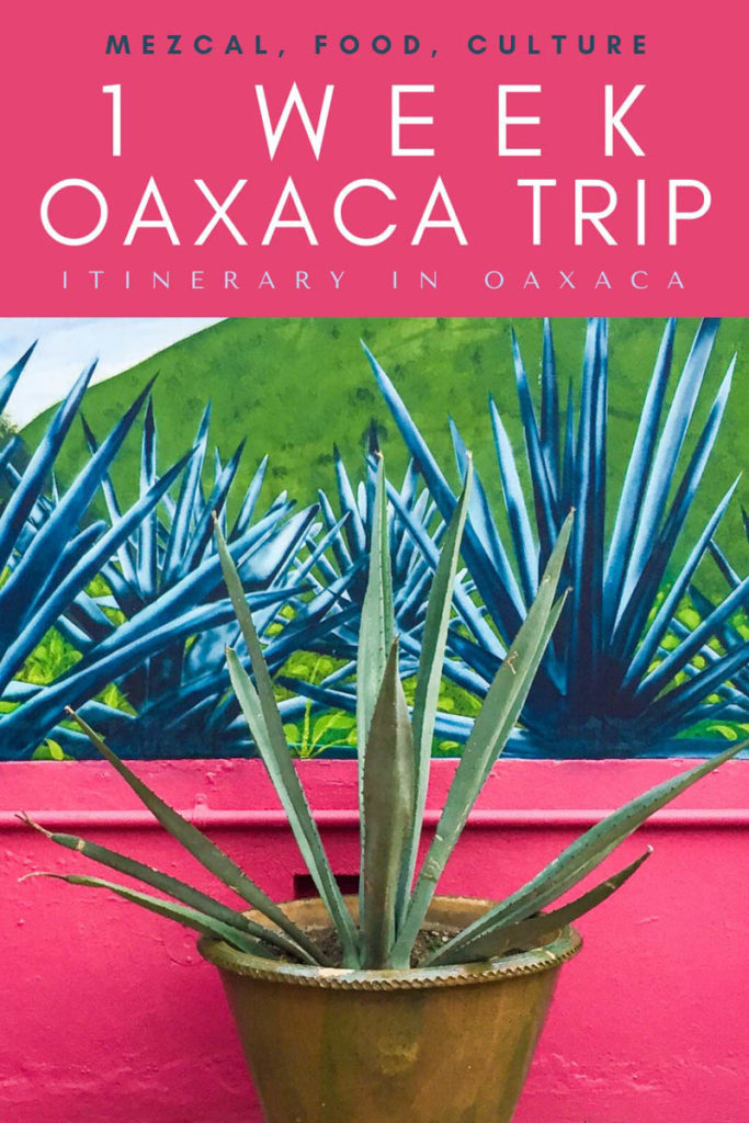 Copy of 1 week oaxaca trip_ itinerary in oaxacaLRLR