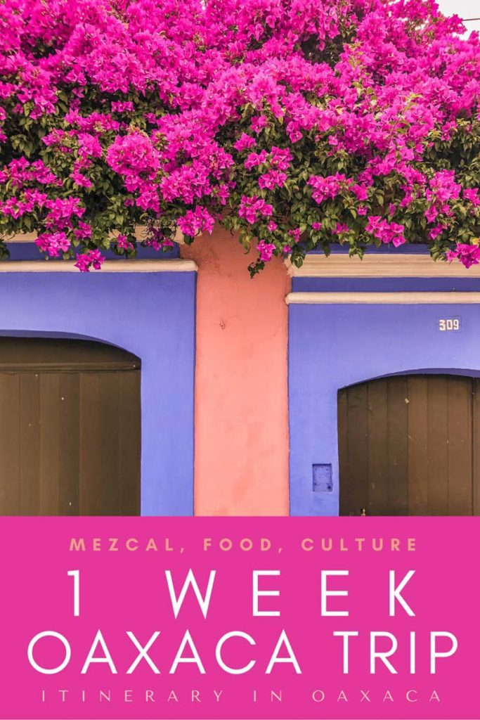 Copy of Copy of 1 week oaxaca trip_ itinerary in oaxacaLRLR