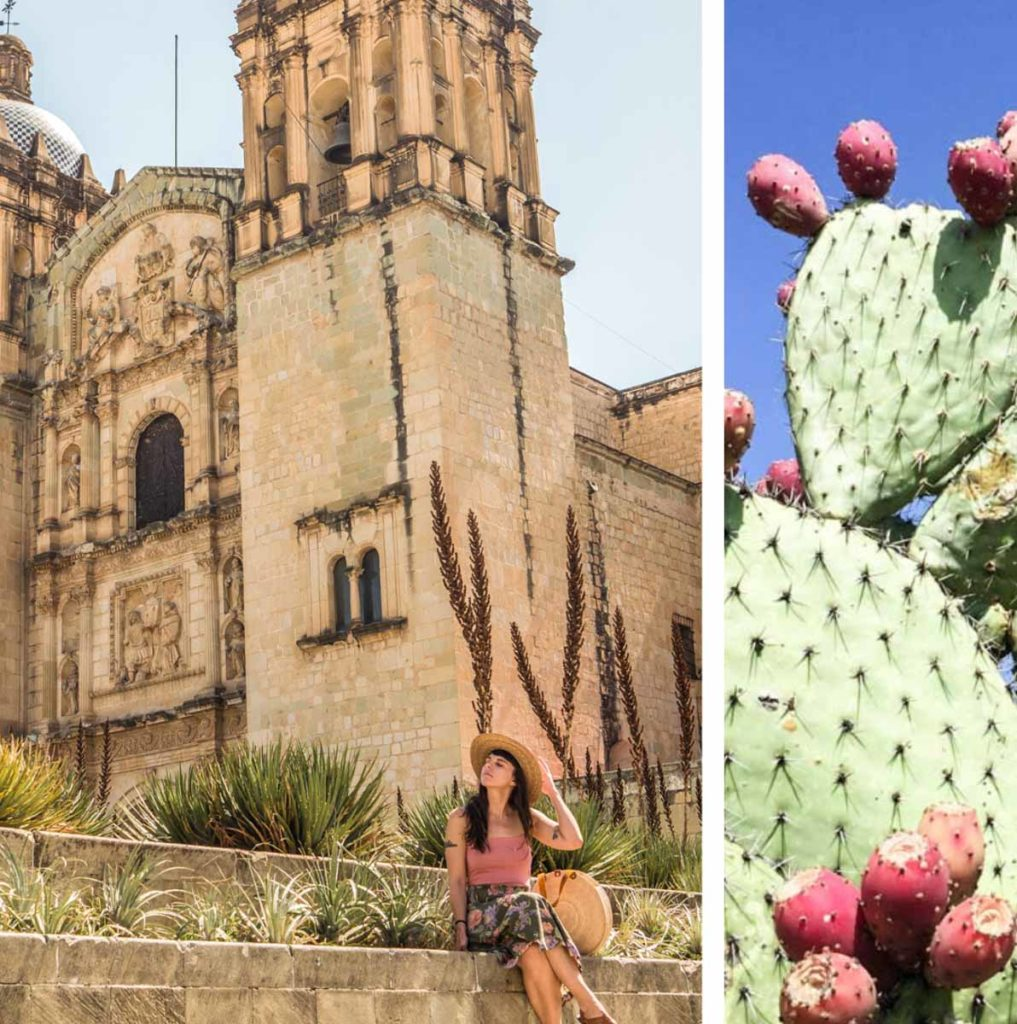oaxaca trip 7 day itinerary