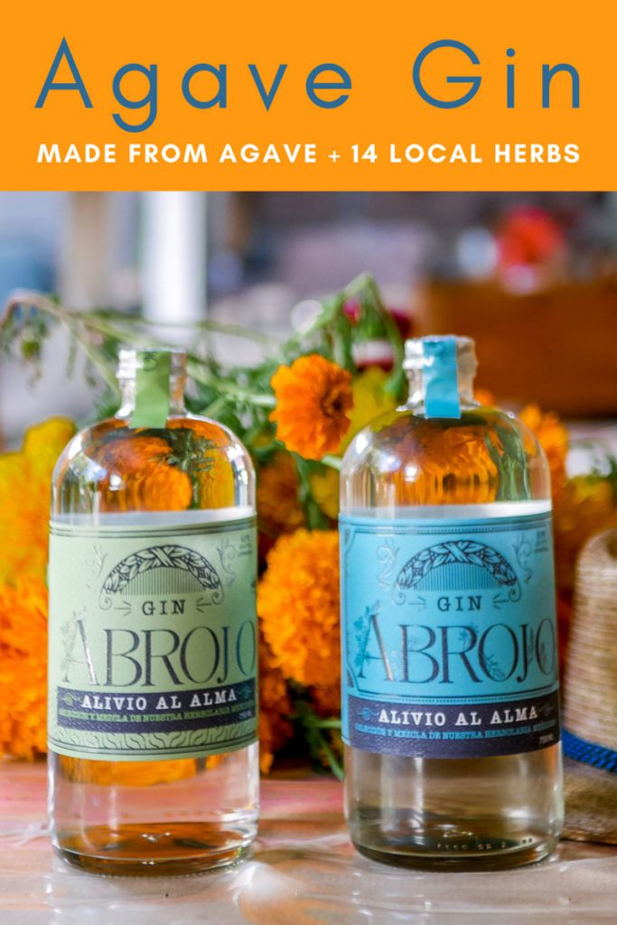 Agave Gin: A Mexican Gin Made from Agave Pins