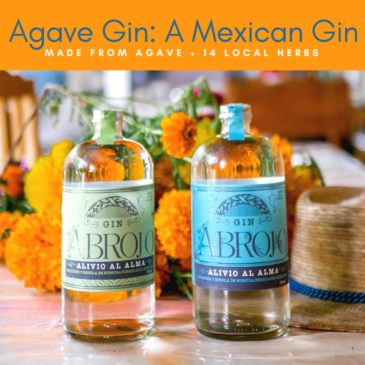 Agave Gin: A Mexican Gin Made from Agave Thumb