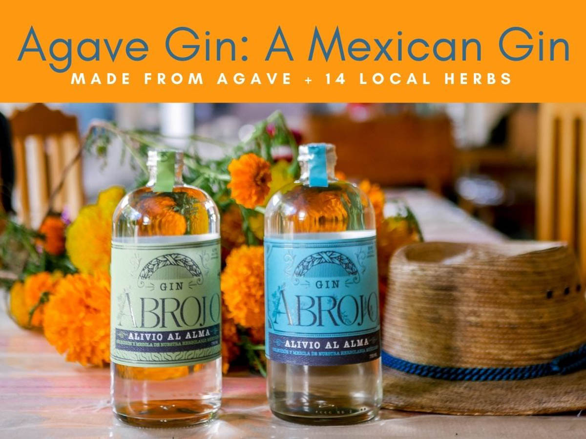 Agave Gin: A Mexican Gin Made from Agave