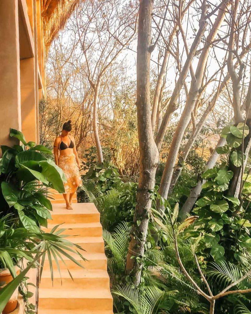 jungle views in oaxaca beach hotel